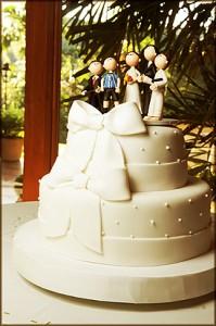 Casamento íntimo no sitio
