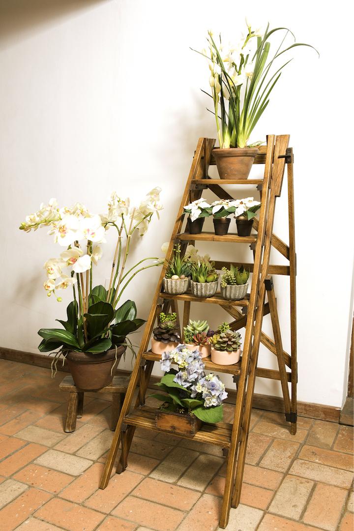 ... ou organiza os vasos de plantas da dona da casa na varanda!