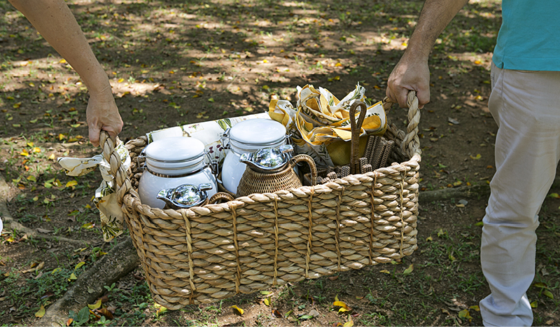 CD_Blog_PICNIC5