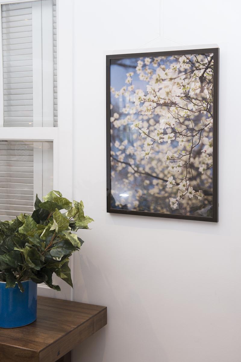 Quadro Dogwood, com flores brancas - Cecilia Dale